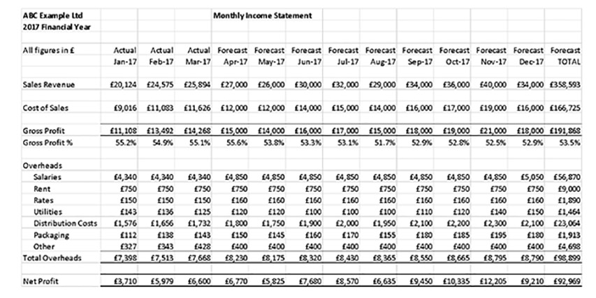 monthly income statement